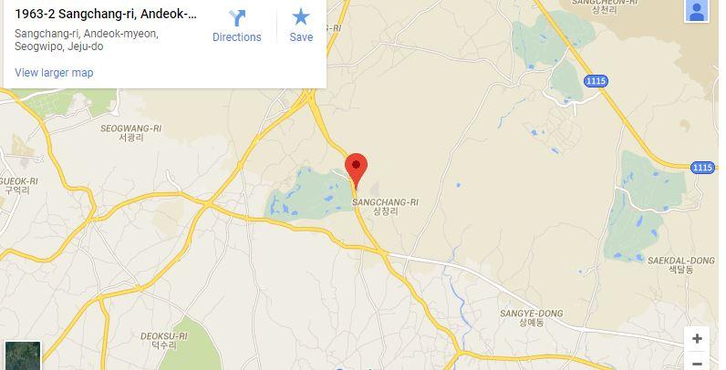 """023 Өмнөд Солонгост  таныг ганцаардуулахгүй """"өхөөрдөм"""" зургаан кафе"""