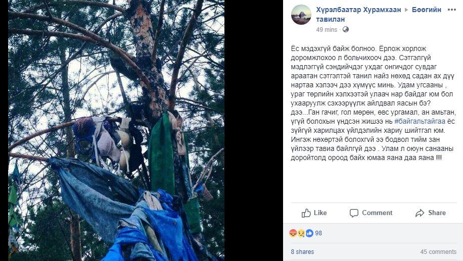 inm-1 Арай ч дээ: Модноос хадаг уях нь багадаад дотуур хувцасаа өлгөх нь хэр зүйтэй вэ?