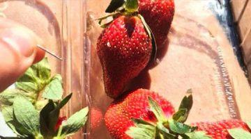 strawberry-360x200 Нүүр