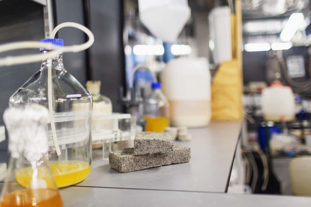 04-3 Хүний шээсээр үйлдвэрлэсэн дэлхийн анхны био тоосго ирээдүйтэй барилгын материалд тооцогдов