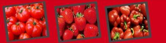 2-2 Тод өнгийн жимс, хүнсний ногооны ач тус