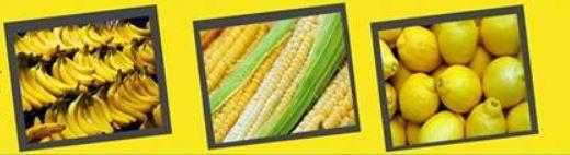 4-2 Тод өнгийн жимс, хүнсний ногооны ач тус