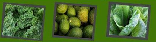 5-2 Тод өнгийн жимс, хүнсний ногооны ач тус