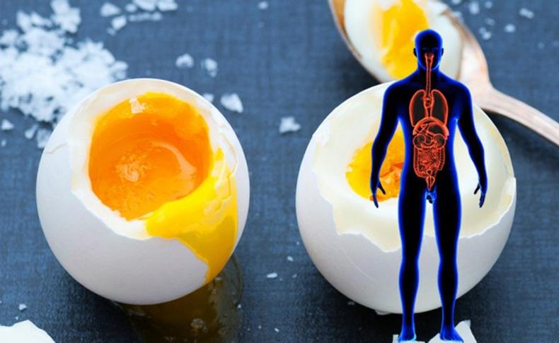 2d83764eeb844b6ee3d3743606924158 Өдөрт нэг өндөг идвэл зүрх судасны өвчнөөс сэргийлж чадна