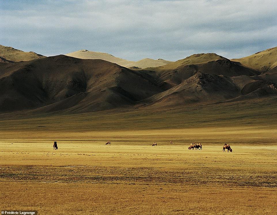 6644324-6429135-image-a-112_1543224879398 Фото: Английн гэрэл зурагчны дуранд Монгол улс