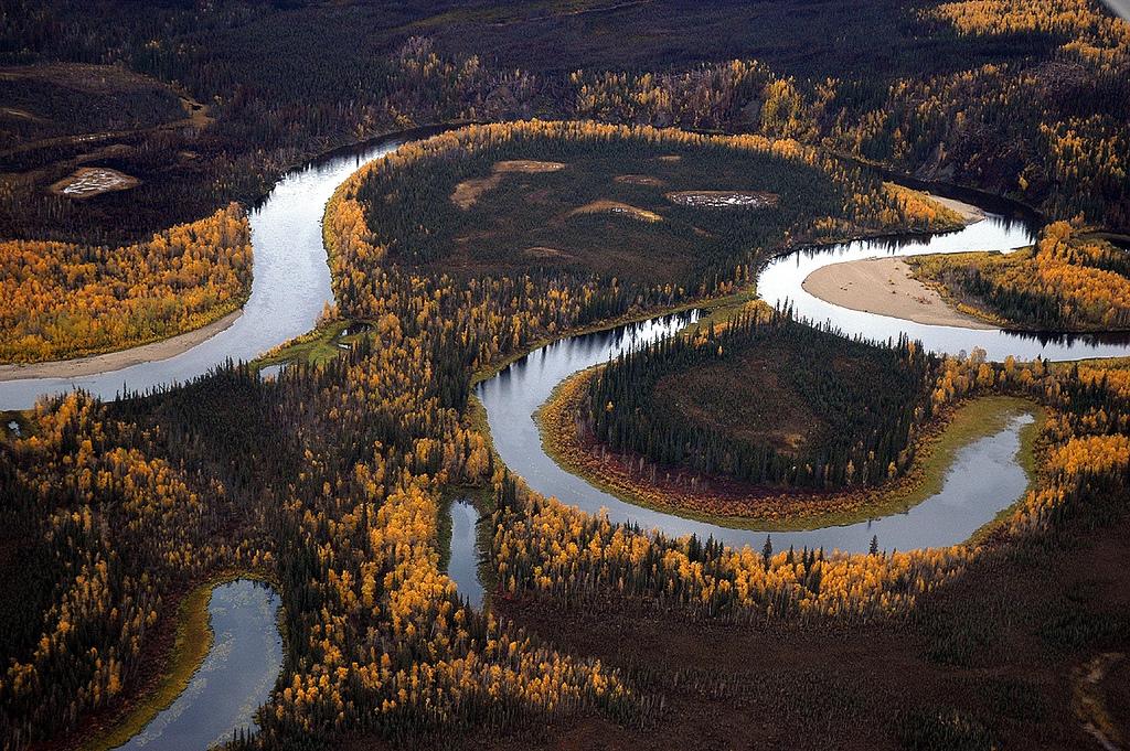 1-12 Сүүлийн 40 жилд дэлхийн зэрлэг байгалийн 60 хувь нь устжээ