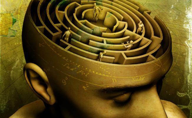 1448302691_top-20-faktov-o-psihologii-cheloveka Хүний сэтгэл зүйн тухай сонирхолтой баримтууд