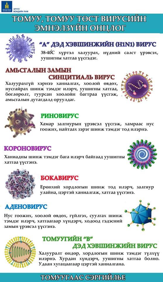 49531848_1132534710253667_4667610061739130880_n Томуу, томуу төст вирусийн эмнэлзүйн онцлог