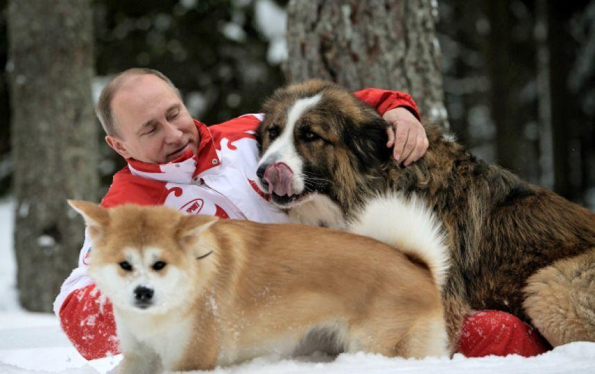 858x540 ОХУ-ын Ерөнхийлөгч В.Путины хөрөнгө