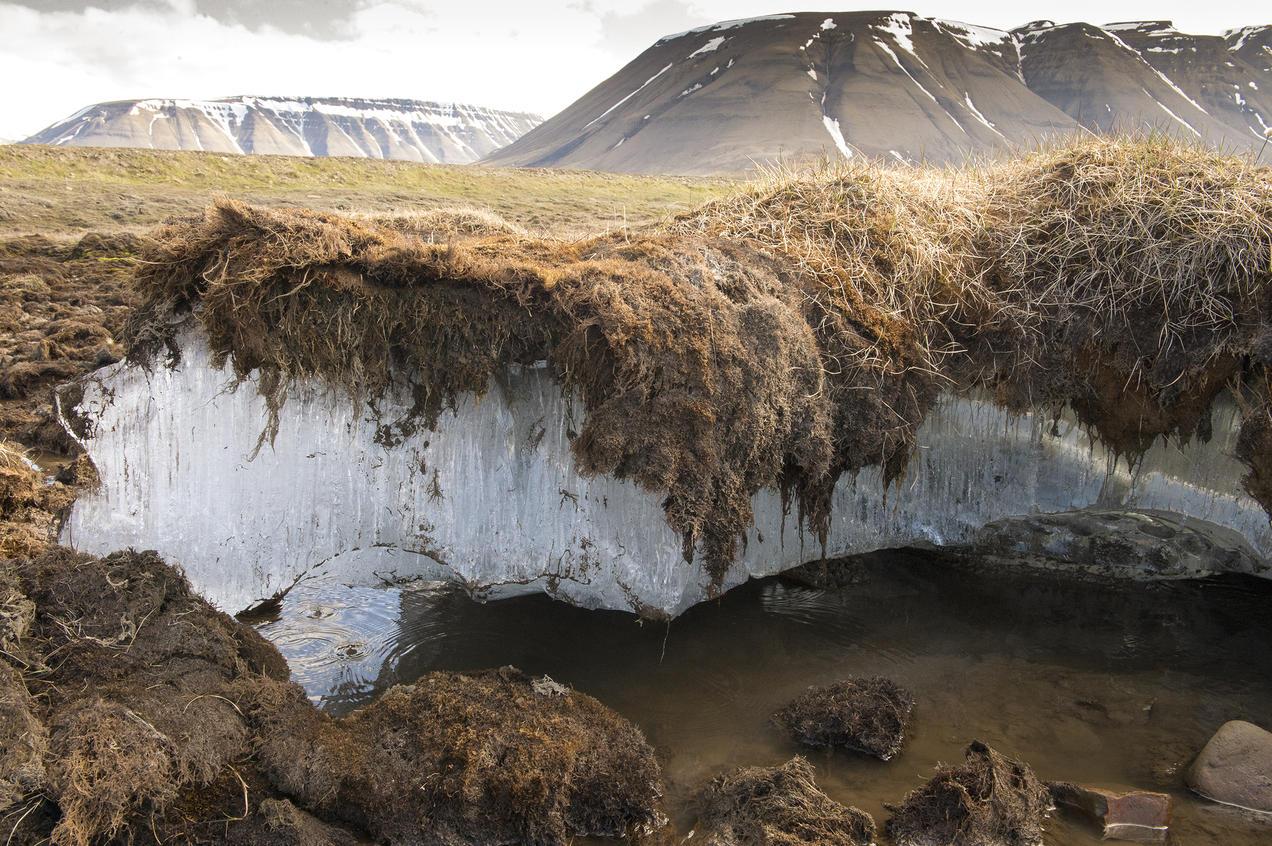 guide_permafrost_579215990_rm_ds_2400 Мөнх цэвдэг 10000 жилд нэг удаа, газрын доорхи ус 5000 жилд нэг удаа эргэлтэнд ордог