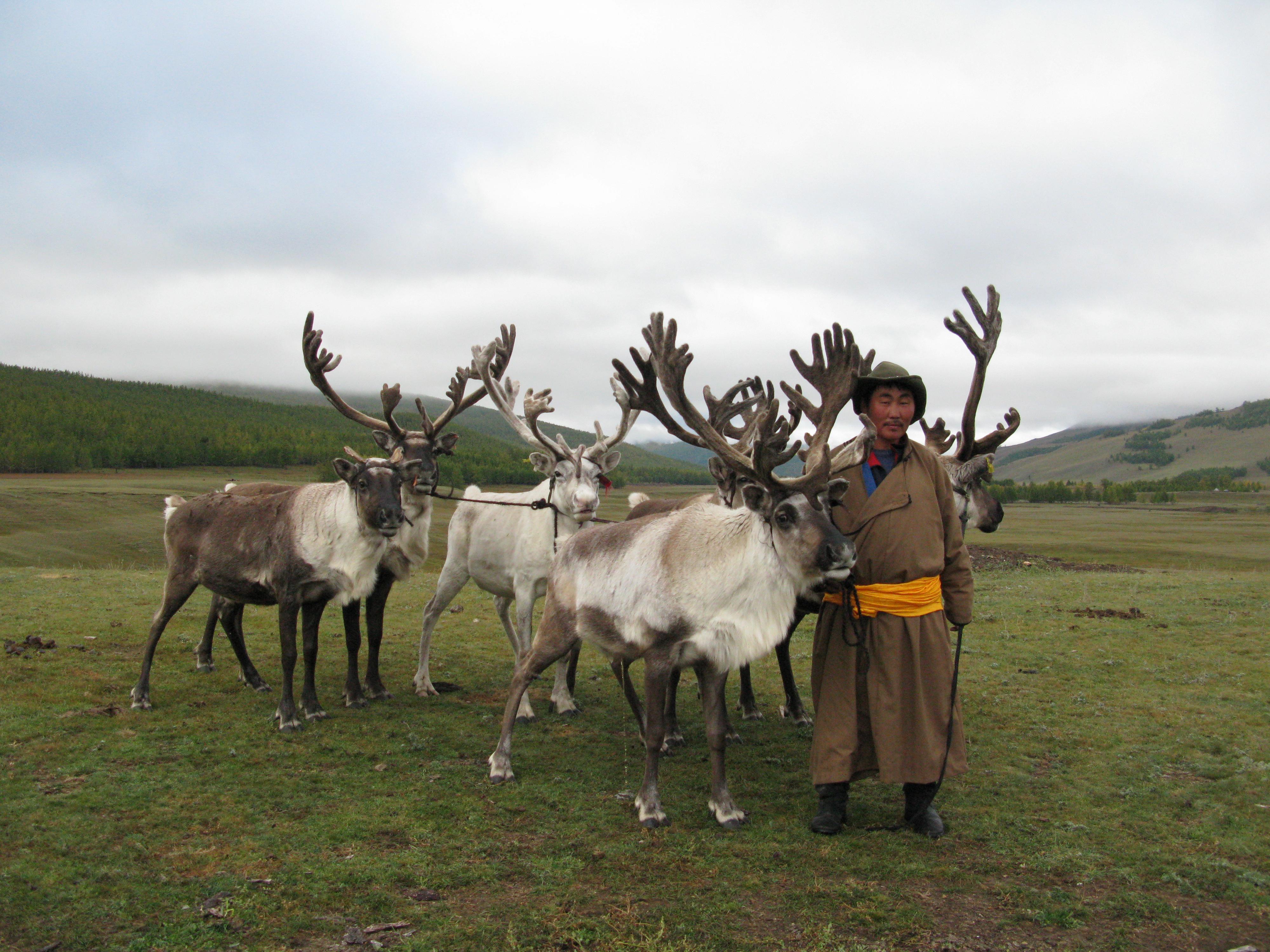03-12 Монголын мөхөж буй цаатнуудын амьдрал