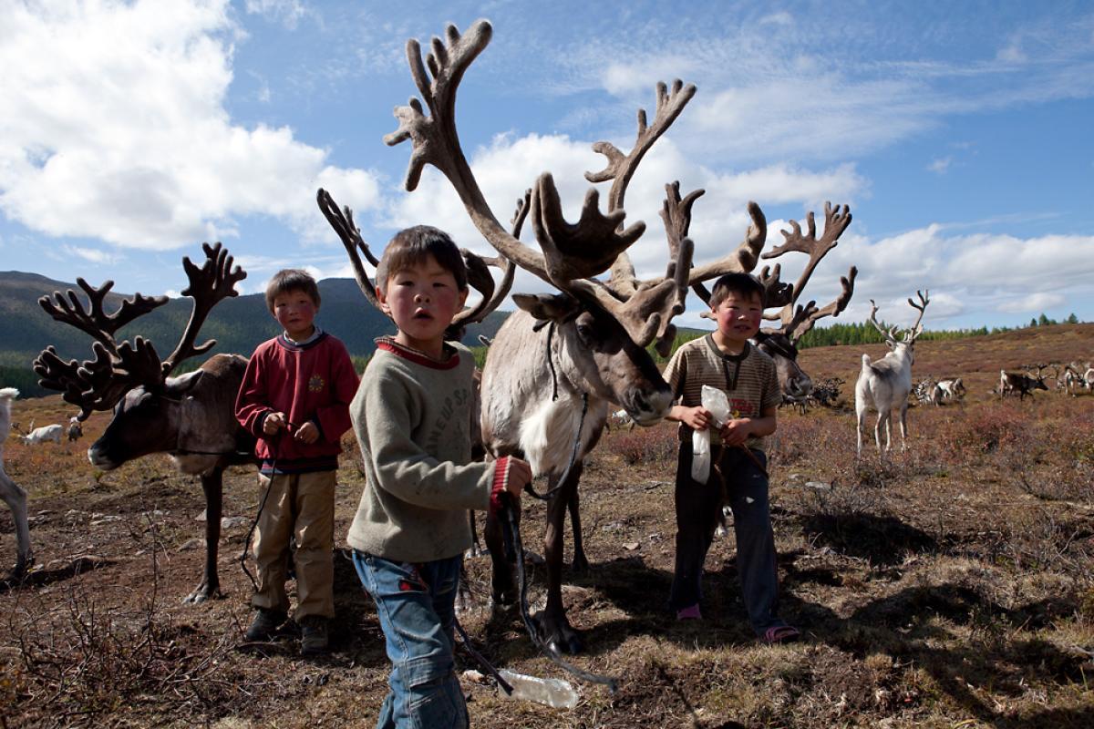 08 Монголын мөхөж буй цаатнуудын амьдрал