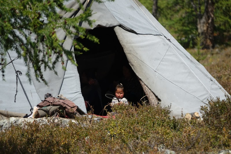 09 Монголын мөхөж буй цаатнуудын амьдрал
