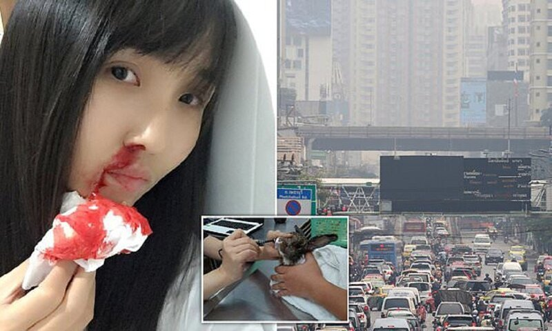 2-0 Бангкокийн иргэд утаанаас болж цусаар ханиаж байна