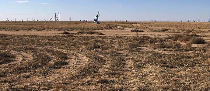 5-6 Газрын тосны салбарын бодлогыг Хятадууд тодорхойлж байна
