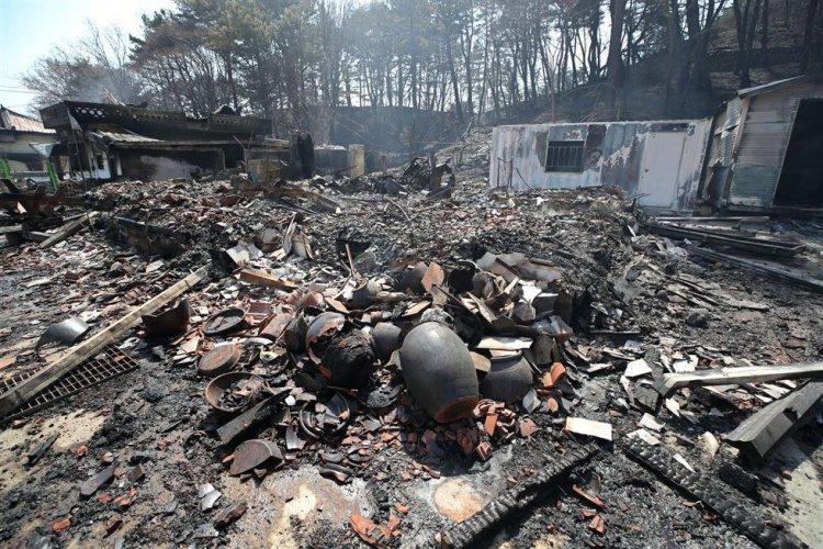 optimize-2-750x500 Өмнөд Солонгосын түймэрт нэг хүн амь үрэгджээ