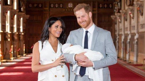 1557432532930-500x281 Хатан хааны гэр бүлийн шинэ гишүүнийг сармагчинтай зүйрлэжээ