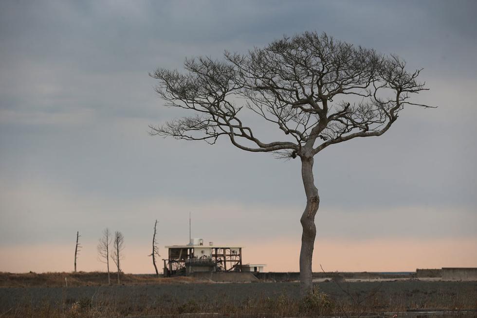 """9f1d710fe7586e7e5e5a305ab5da38a6__980x Чернобылийн ихэр буюу """"Фүкүшима"""" цацрагаар хордсон усыг далай руу асгадаг уу?"""