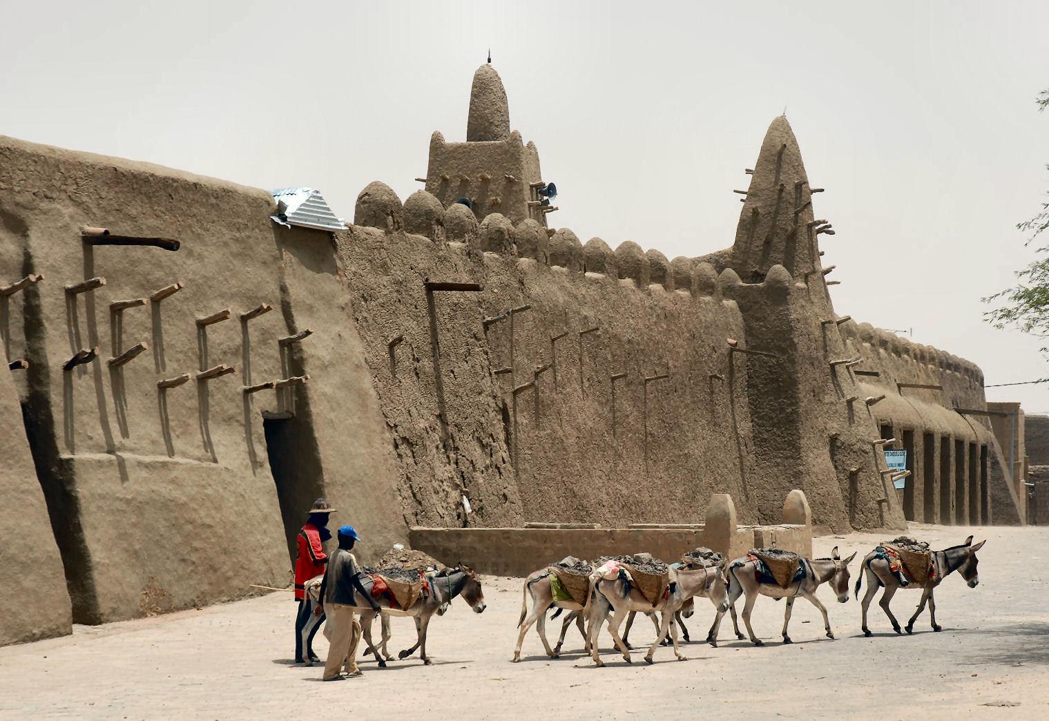 Donkeys_Timbuktu Дэлхий дээрх там буюу хамгийн халуун газрууд